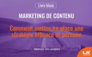 Livre blanc | Comment mettre en place une stratégie de contenu efficace et pérenne. Téléchargez votre exemplaire